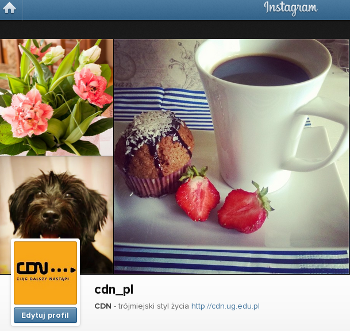 instagram cdn